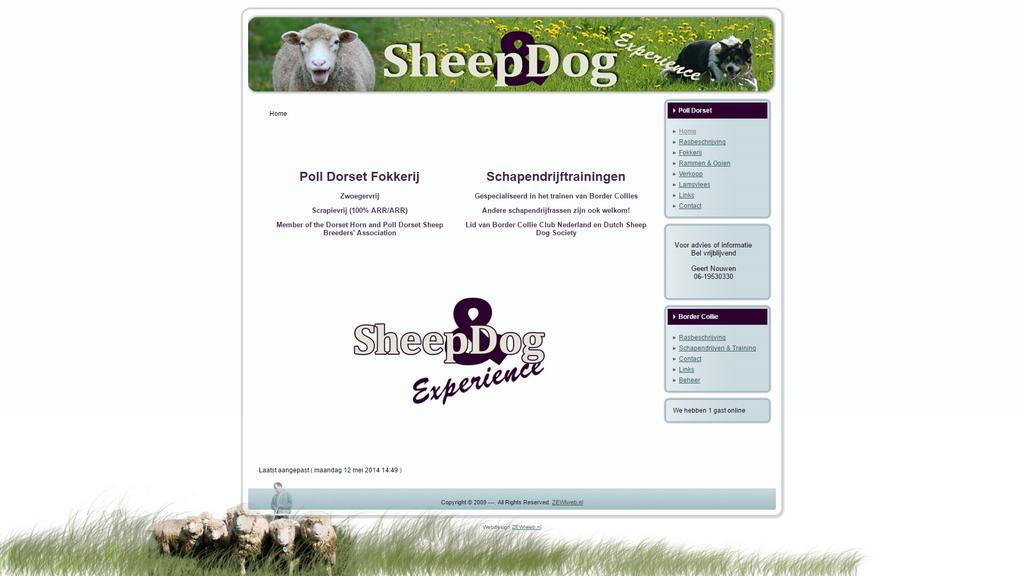 Sheepdog Experience